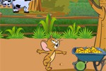 Tom and Jerry in Super Cheese Bounce!