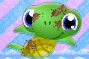 Sparkling Turtle Washing